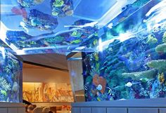 Fish Tank-I have always dreamed about having one of these! Fish room. haha