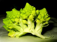 Broccoli Done Right For Your Body – Everyday Food Tips