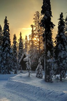 Sunset, Lapland, Finland