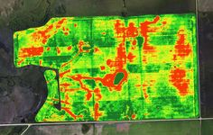 NDVI Image used to determine crop stress and aid in scouting the field to find out what is causing the crop stress.