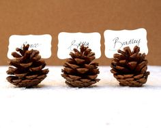Pine Cone Seating holder. Table Rustic. Country Theme Favor Autumn Fall Winter, Christmas, Brown, Wood and Masculine Theme Party