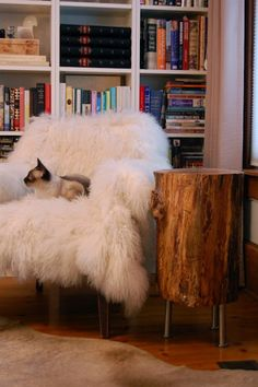 """DIY Tree Stump Table - the """"inspiration"""" shot to make a table for my friend."""