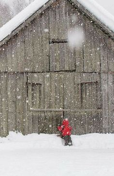 One of my favs! Sweet little one peeking in the barn looking for Prancer...maybe???