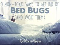 9 Non-Toxic Ways to Get Rid of Bed Bugs (& Avoid Them)