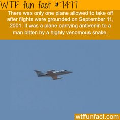 The only plane that was allowed to take of after 9/11 - FACTS