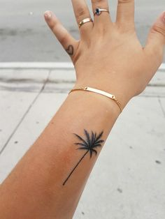 My palm tree tattoo made in Miami ! Grove Ink Tattoo, Coconut Grove, Miami