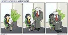 Business Cat - Lap