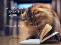 We live and breathe words. - Cassandra Clare  #booksthatmatter #bookhugs #bloomingtwig #yourstory