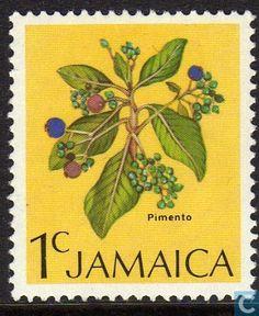 Jamaica - Allspice bush 1972