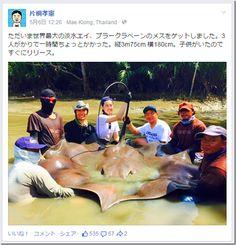 Japanese IT company CEO Katagiri,he got the huge ray!