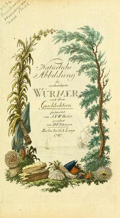 Bd 10 plates (1787) - Gemeinnüzzige Naturgeschichte des Thierreichs : - Biodiversity Heritage Library | beautiful title page