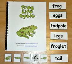 """Frog Life Cycle Adapted Book:  """"Long before a frog is born, Mama Frog lays her eggs in a waiting pond....""""   The Frog Life Cycle Adapted Book is a frog-themed adapted book that focuses on frog life cycle vocabulary.  This set includes both the color and black and white copies. Teachers read the book with students, as students follow along and interact with matching words and picture pieces."""