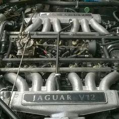 Coisa linda Jaguar V12