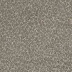 Color: 00503 Arctic Frost CCS20 Capellini - Shaw Caress Carpet Georgia Carpet Industries