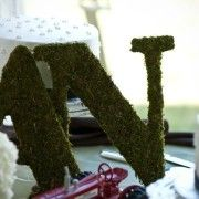 moss letters 2