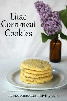 Bake up some floral treats perfect snacking and gift giving with the edible flowers of spring and summer with these perfectly crunchy lilac cornmeal cookies.