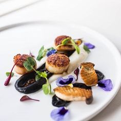 Scallops, squid ink, cauliflower puree, baby king mushrooms, and XO sauce by Fine Dinning Recipes, Appetizer Sandwiches, Appetizers, Gourmet Recipes, Cooking Recipes, Cauliflower Puree, Western Food, Party Food And Drinks, Fish Dishes