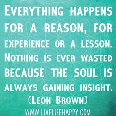 Everything happens for a reason, for experience or a lesson. Nothing is ever wasted because the soul is always gaining insight. -Leon Brown
