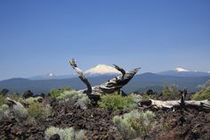 View from Lava fields in Oregon