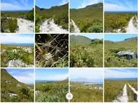 My Ads | Gumtree Travel And Tourism, South Africa, Ads