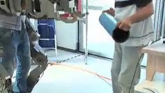 Pisa, Sant'Anna sfida tagli con scheletri robot e teatri 3D. Viaggio nel polo universitario: ricerca al servizio dell'uomo