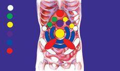 Presionando en estos puntos masajeas los órganos consigues: Eliminar los gases. Desintoxicar. Eliminar las tensiones emocionales. Mejorar los desarreglos digestivos tal como síndrome del colon irritable, hinchazón, estreñimiento. Restablecer la armonía de la energía de los órganos internos. Desarrolla la conciencia de sí mismo. ¿Como se aplica? Aquí te ponemos lo que significa cada color. …