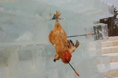 Ban Chicken Arrow Shooting At The Jiling Province Snow Festival in China!