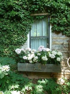 Astonishing Window Boxes Planters for The Home