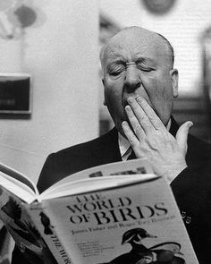 Alfred Hitchcock reading The World of Birds. Doing some homework, maybe? Alfred Hitchcock, Hitchcock Film, Classic Hollywood, Old Hollywood, People Reading, Celebrities Reading, Entertainment Weekly, Film Director, Portrait