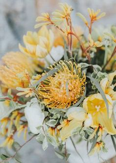Wedding Flower Bouquets Yellow pincushion protea - A golden yellow mountain elopement wedding inspiration shoot with honey-inspired touches in Maine. Mustard Wedding Colors, Yellow Wedding Colors, Wedding Color Schemes, Yellow Weddings, Protea Bouquet, Protea Wedding, Summer Wedding Bouquets, Bridal Bouquets, Wedding Colors