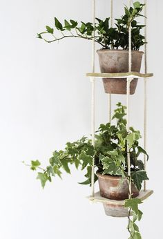 This idea has been bubbling away for a while now but it's been put to the side on a number of occasions. Everyone loves a hanging planter right? I've made and owned various such hanging delights ar...