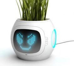 #Beginning #Communication Een digitale plantenpot die voor planten zorgt!