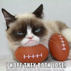 2014 super bowl...I'm in complete agreement...