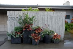 Repeat forms and textures, and choose a limited color palette, to create visual cohesion in a group of containers
