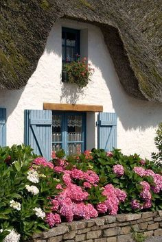 """""""Hydrangeas before thatched cottage- Hortensien vor Haus mit Rieddach"""" Photography by Ralf Rosendahl buy now as poster, art print and greeting card. Fairytale Cottage, Storybook Cottage, Garden Cottage, Cozy Cottage, Cottage Living, Cottage Homes, Cottage Crafts, Little Cottages, Cabins And Cottages"""