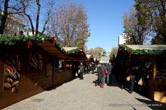 #Natale anticipato in piazza Solferino. Fino al 24 novembre 2013 la storica piazza di #Torino, recentemente ristrutturata, si trasforma in un piccolo villaggio alsaziano.