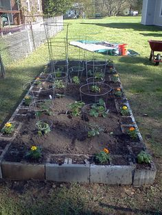 My Raised Bed Garden Day 1. April 7, 2012. Made with cinder blocks. Best idea ever.