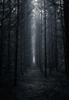 Enter the void. (by Nikola Ostrun)