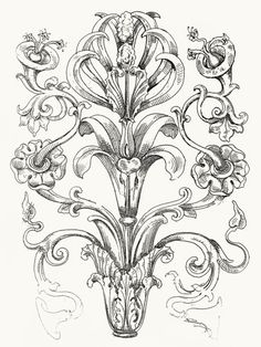 From Guide for drawing the acanthus, written and illustrated by James Page, London, 1886.