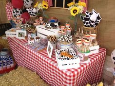Ashlea T's Birthday / western theme - Photo Gallery at Catch My Party Rodeo Birthday, Country Birthday, Cowboy Birthday Party, Farm Animal Birthday, Farm Birthday, 2nd Birthday Parties, Birthday Ideas, Barnyard Party, Farm Party