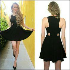 Nwt Sleeveless Skater Dress, S