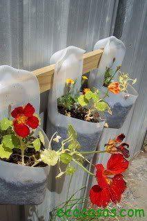 Ecología y vida sustentable: Maceteros ecológicos con botellas plásticas recicladas