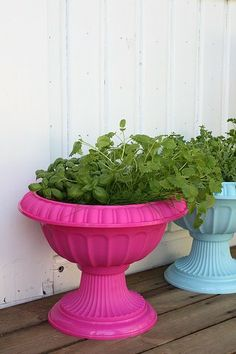 painted plastic pots add some color to your deck or patio
