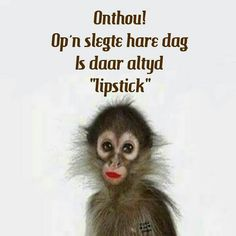 """Op ń slegte hare-dag is daar altyd """"lipstick"""". Best Quotes, Funny Quotes, Afrikaanse Quotes, Good Morning Wishes, Positive Quotes, Haha, Wisdom, Positivity, Messages"""