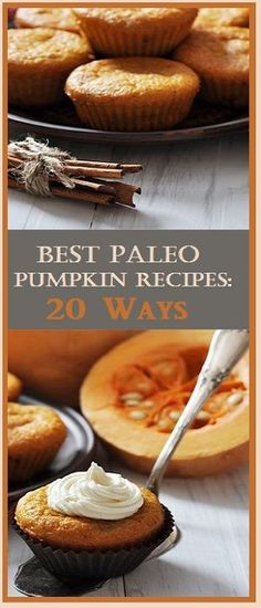 Looking for the best Paleo pumpkin recipes from the Paleo community?  Here are some of the best ones we found!