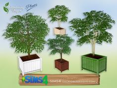 https://www.thesimsresource.com/downloads/details/category/sims4-objects-furnishing-decor-plants/title/gardening-foyer-plants--potted-tree/id/1343950/