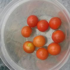 Harvested 9 cherry tomatoes