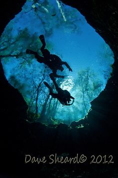 Ascending through the eye in Ginnie Springs