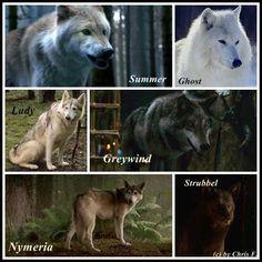 GOT - the 6 kids each took a baby wolf Summer - Bran Grey wind - Robb Ghost - Jon Nymeria - Arya Lady - Sansa Strubbel - Rickon