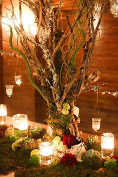 Moss tree. Wedding Planner: LK Events | Florist: Stems. Photography: Evan Hunt Photography - www.evanhuntphoto.com/  Read More: http://www.stylemepretty.com/2014/07/15/elegant-chicago-wedding-at-cafe-brauer/